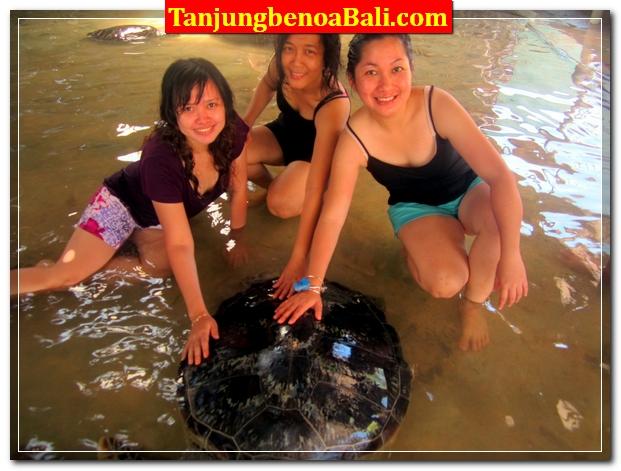 Pulau Penyu Bali Tanjung Benoa
